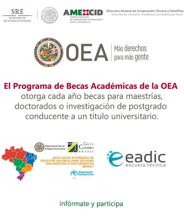 Oferta de Becas de la Organización de Estados Americanos (OEA) | Maestrías y Doctorados