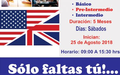Curso de Inglés Básico, Pre-Intermedio e Intermedio